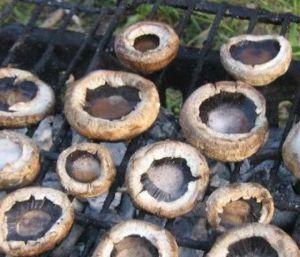 ızgara mantar