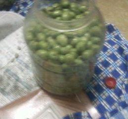Salamura zeytin yapılışı