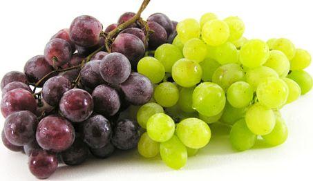 Taze üzüm