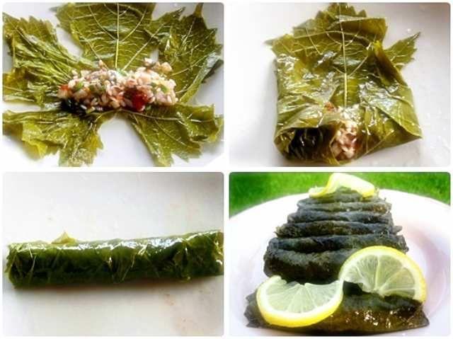 yaprak sarması konserve